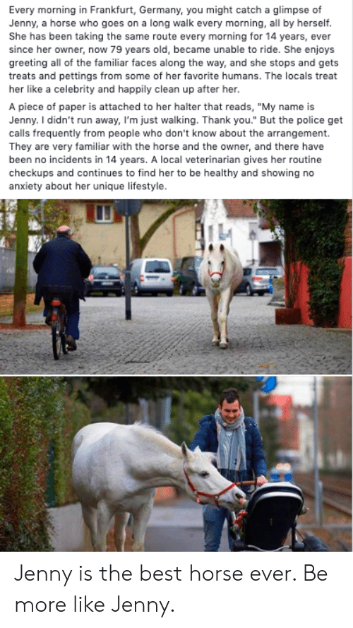 """greeting: Every morning in Frankfurt, Germany, you might catch a glimpse of  Jenny, a horse who goes on a long walk every morning, all by herself.  She has been taking the same route every morning for 14 years, ever  since her owner, now 79 years old, became unable to ride. She enjoys  greeting all of the familiar faces along the way, and she stops and gets  treats and pettings from some of her favorite humans. The locals treat  her like a celebrity and happily clean up after her.  A piece of paper is attached to her halter that reads, """"My name is  Jenny. I didn't run away, I'm just walking. Thank you."""" But the police get  calls frequently from people who don't know about the arrangement.  They are very familiar with the horse and the owner, and there have  been no incidents in 14 years. A local veterinarian gives her routine  checkups and continues to find her to be healthy and showing no  anxiety about her unique lifestyle. Jenny is the best horse ever. Be more like Jenny."""
