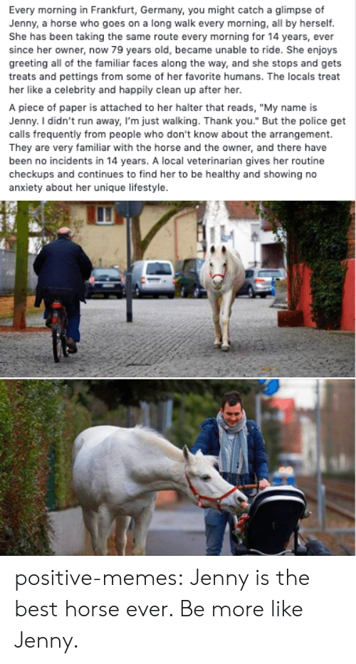 """greeting: Every morning in Frankfurt, Germany, you might catch a glimpse of  Jenny, a horse who goes on a long walk every morning, all by herself.  She has been taking the same route every morning for 14 years, ever  since her owner, now 79 years old, became unable to ride. She enjoys  greeting all of the familiar faces along the way, and she stops and gets  treats and pettings from some of her favorite humans. The locals treat  her like a celebrity and happily clean up after her.  A piece of paper is attached to her halter that reads, """"My name is  Jenny. I didn't run away, I'm just walking. Thank you."""" But the police get  calls frequently from people who don't know about the arrangement.  They are very familiar with the horse and the owner, and there have  been no incidents in 14 years. A local veterinarian gives her routine  checkups and continues to find her to be healthy and showing no  anxiety about her unique lifestyle. positive-memes:  Jenny is the best horse ever. Be more like Jenny."""