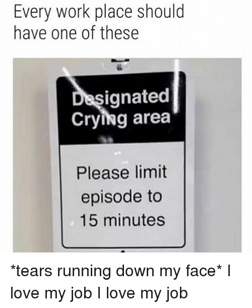Love My Job: Every work place should  have one of these  ignated  Crying area  Please limit  episode to  15 minutes *tears running down my face* I love my job I love my job
