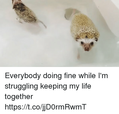 Funny, Life, and Fine: Everybody doing fine while I'm struggling keeping my life together https://t.co/jjD0rmRwmT