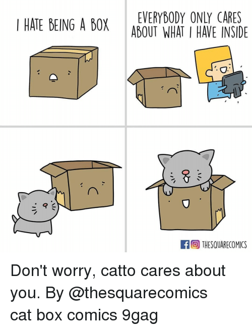 9gag, Memes, and Comics: EVERYBODY ONLY CARES  I HATE BEING A BOX ABOUT WHAT I HAVE INSIE  THESQUARECOMICS Don't worry, catto cares about you.⠀ By @thesquarecomics⠀ cat box comics 9gag