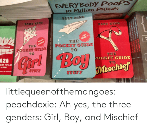 holla: EVERYBoDy PooPS  to Million Pounds  BART KING  BART KING  Sh  THE  OCKET GUIDE  TO  THE  POCKET GUIDE  TO  THE  POCKET GUIDE  TO  AZA  ir  DAY TIPS AN  JAPAN  Mischief  STUFF  TUF  tions by Joel Holla littlequeenofthemangoes:  peachdoxie:  Ah yes, the three genders: Girl, Boy, and Mischief