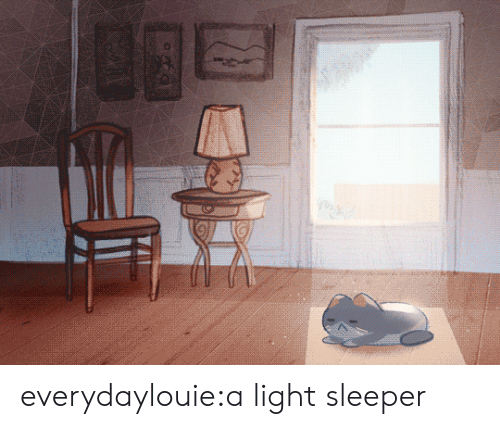 Light Sleeper: everydaylouie:a light sleeper