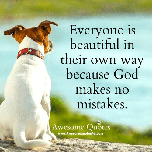 Image of: Love Quotes Beautiful God And Memes Everyone Is Beautiful In Their Own Way Because God Makes No Mistakes Awesome Quotes Www Awesome Quotes4ucom Aww Memes 25 Best Memes About Awesome Quotes Awesome Quotes Memes
