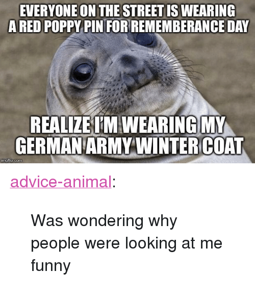 """poppy: EVERYONE ON THE STREET IS WEARING  ARED POPPY PIN FORREMEMBERANCE DAY  REALIZE T'M WEARING MY  GERMAN ARMY WINTERCOAT  mgiip.com <p><a href=""""http://advice-animal.tumblr.com/post/167446242194/was-wondering-why-people-were-looking-at-me-funny"""" class=""""tumblr_blog"""">advice-animal</a>:</p>  <blockquote><p>Was wondering why people were looking at me funny</p></blockquote>"""
