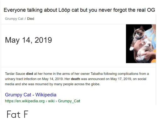 Tardar Sauce: Everyone talking about Lööp cat but you never forgot the real OG  Grumpy Cat / Died  May 14, 2019  Tardar Sauce died at her home in the arms of her owner Tabatha following complications from a  urinary tract infection on May 14, 2019. Her death was announced on May 17, 2019, on social  media and she was mourned by many people across the globe  Grumpy Cat Wikipedia  https://en.wikipedia.org wiki Grumpy_Cat Fat F