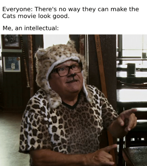 Cats, Good, and Movie: Everyone: There's no way they can make the  Cats movie look good  Me, an intellectual  NDRTHLAND PRO