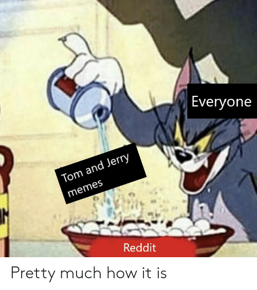 Everyone Tom and Jerry Memes Reddit Pretty Much How It Is