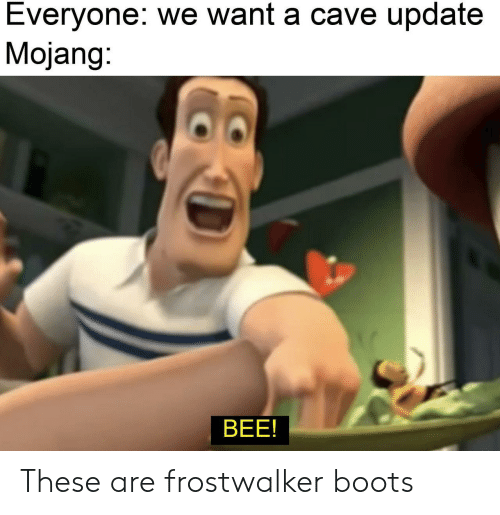 Mojang: Everyone: we want a cave update  Mojang:  BEE! These are frostwalker boots