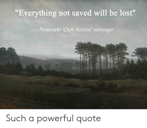 """A Powerful: """"Everything not saved will be lost""""  Nintendo 'Quit Screen' message Such a powerful quote"""