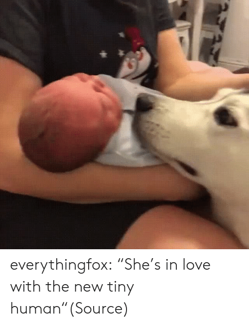 "Aww, Love, and Reddit: everythingfox:  ""She's in love with the new tiny human""(Source)"