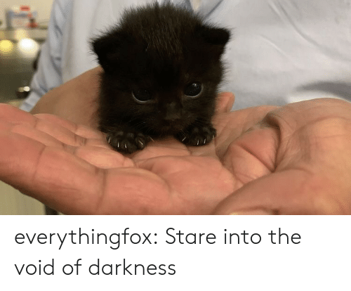 void: everythingfox:  Stare into the void of darkness