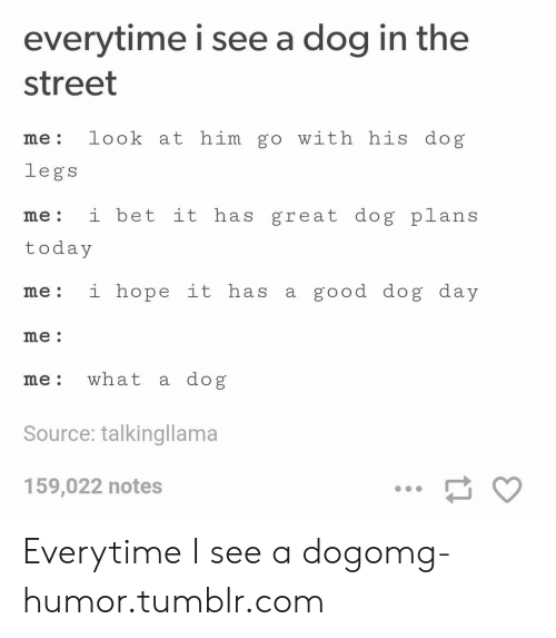 Dog Day: everytime i see a dog in the  street  me: look at him go with his dog  legs  me: i bet it has great dog plans  today  me: i hope it has a good dog day  me  me: what a dog  Source: talkingllama  159,022 notes Everytime I see a dogomg-humor.tumblr.com