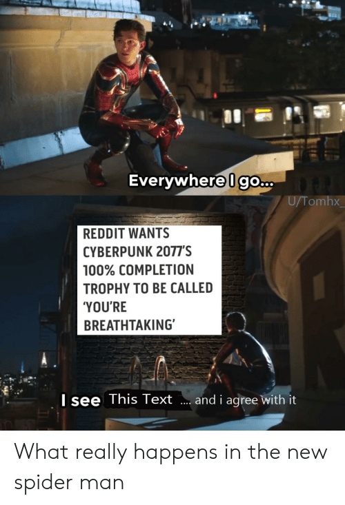 trophy: Everywhere Igo...  U/Tomhx  REDDIT WANTS  CYBERPUNK 2077'S  100% COMPLETION  TROPHY TO BE CALLED  'YOU'RE  BREATHTAKING  Isee This Text  and i agree with it What really happens in the new spider man