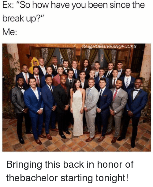 "Break, Girl Memes, and Back: Ex: ""So how have you been since the  break up?""  IG @HOEGIVESNOFUCKS Bringing this back in honor of thebachelor starting tonight!"