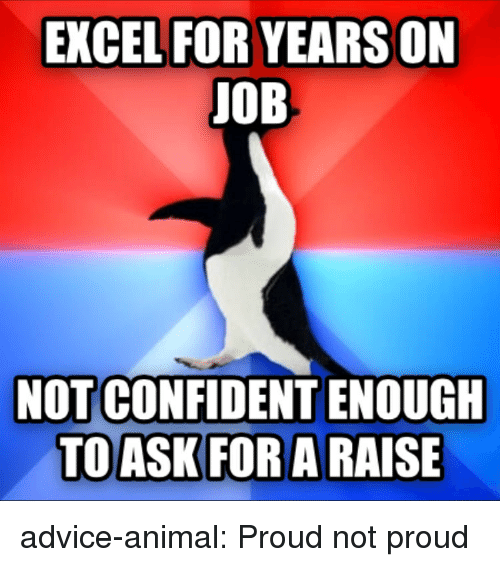 Advice, Tumblr, and Animal: EXCEL FOR YEARS ON  JOB  NOT CONFIDENT ENOUGH advice-animal:  Proud not proud