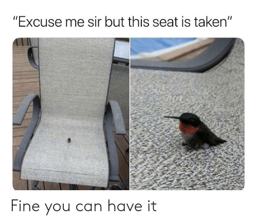 """Taken, Can, and Seat: """"Excuse me sir but this seat is taken"""" Fine you can have it"""