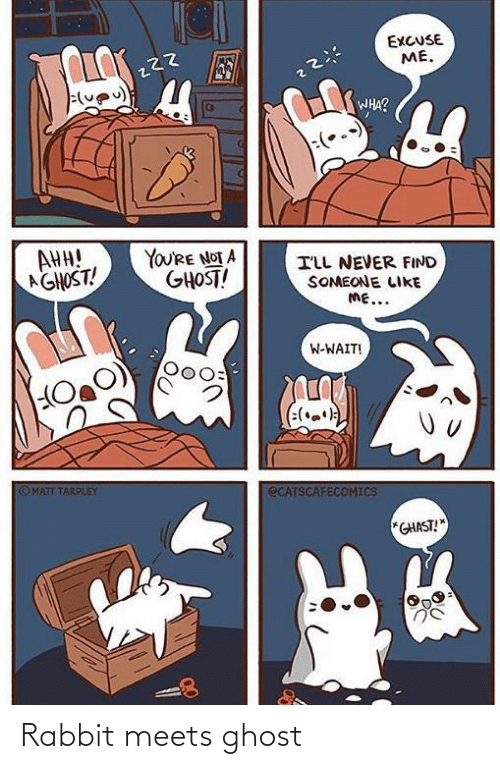 Ghost: EXCUSE  ME.  WHA?  AHH!  AGHOST!  YOU'RE NOT A  GHOST!  ILL NEVER FIND  SOMEONE LIKE  ME...  W-WAIT!  (:(.)  OMATT TARPLEY  ECATSCAFECOMICS  *GHAST! Rabbit meets ghost