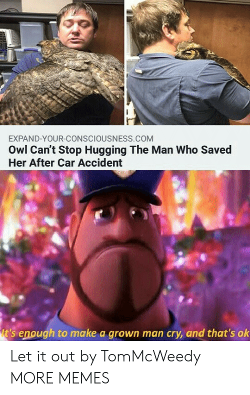 hugging: EXPAND-YOUR-CONSCIOUSNESS.COM  Owl Can't Stop Hugging The Man Who Saved  Her After Car Accident  t's enough to make a grown man cry, and that's ok Let it out by TomMcWeedy MORE MEMES