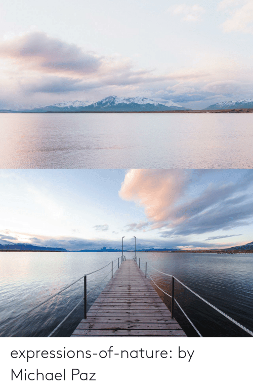Michael: expressions-of-nature:  by Michael Paz