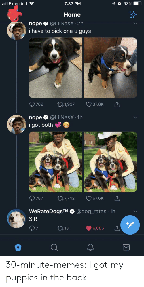 Dog Rates: Extended  7:37 PM  Home  i have to pick one u guys  nope @LilNasX.1h  i got both  787 t 7,742 67.6K  WeRateDogsTM @dog_rates 1h  SIR  6,085  t131  7 30-minute-memes:  I got my puppies in the back