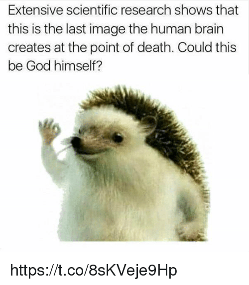 God, Brain, and Death: Extensive scientific research shows that  this is the last image the human brain  creates at the point of death. Could this  be God himself? https://t.co/8sKVeje9Hp