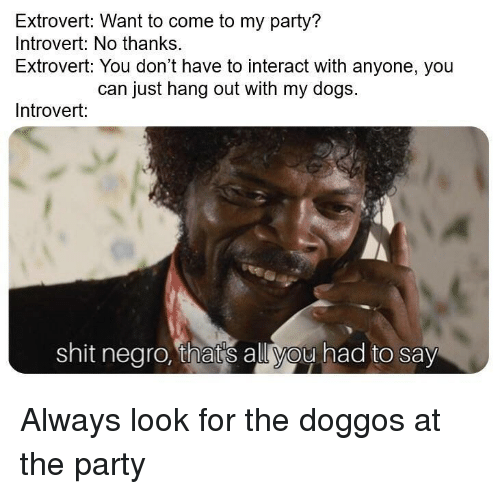 Dogs, Introvert, and Party: Extrovert: Want to come to my party?  Introvert: No thanks.  Extrovert: You don't have to interact with anyone, you  can just hang out with my dogs.  Introvert:  shit negro, thats all you had to say Always look for the doggos at the party