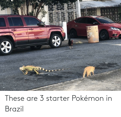 Pokemon: EZ These are 3 starter Pokémon in Brazil