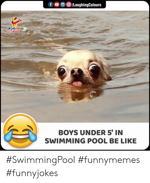 Be Like, Pool, and Swimming: f /LaughingColours  LAUGHING  Celeurs  BOYS UNDER 5' IN  SWIMMING POOL BE LIKE #SwimmingPool #funnymemes #funnyjokes