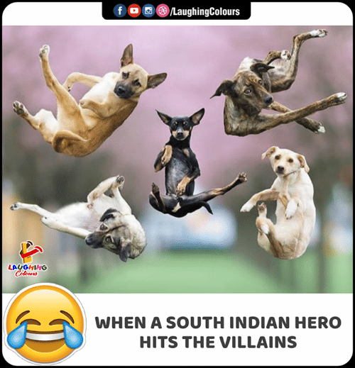 villains: f  LaughingColours  LAUGHING  Colours  WHEN A SOUTH INDIAN HERO  HITS THE VILLAINS