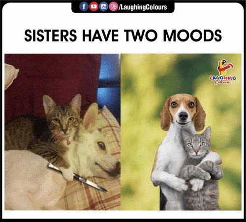 Moods: f /LaughingColours  SISTERS HAVE TWO MOODS  LAYGHING  Celours