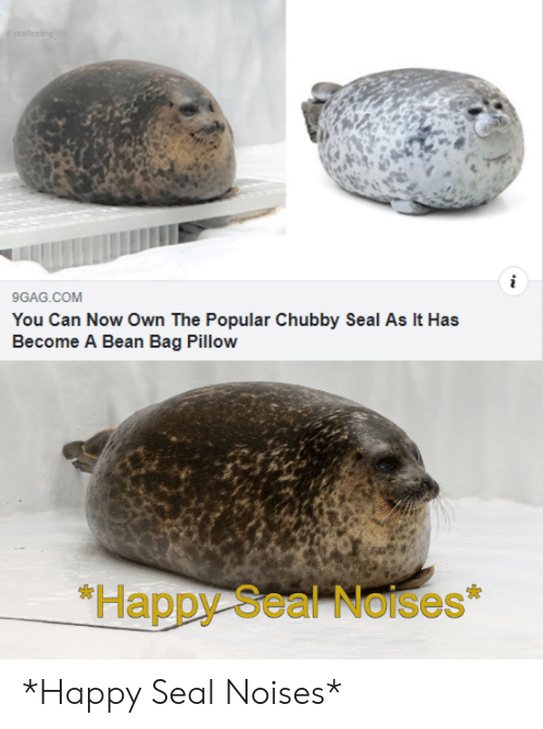 9gag, Happy, and Seal: F realfeeling  i  9GAG.COM  You Can Now Own The Popular Chubby Seal As It Has  Become A Bean Bag Pillow  *Happy Seal Noises *Happy Seal Noises*