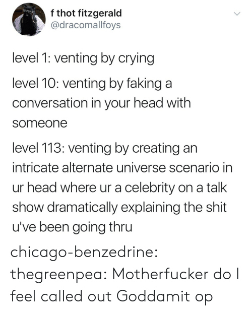 Thru: f thot fitzgerald  @dracomallfoys  level 1: venting by crying  level 10: venting by faking a  conversation in your head with  someone  level 113: venting by creating an  intricate alternate universe scenario in  ur head where ur a celebrity on a talk  show dramatically explaining the shit  u've been going thru chicago-benzedrine: thegreenpea:  Motherfucker do I feel called out   Goddamit op