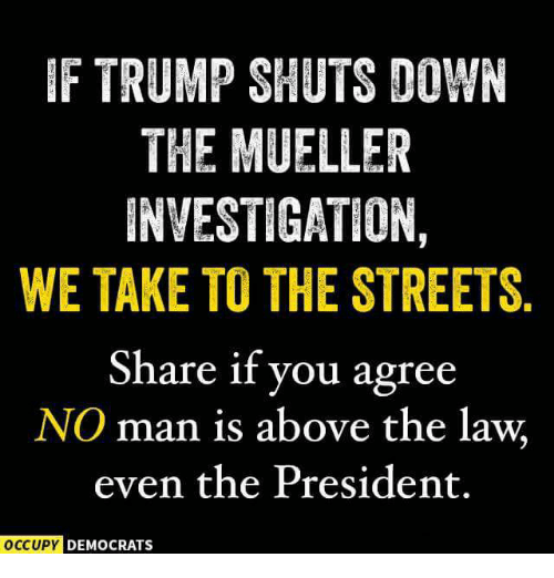Above the Law: F TRUMP SHUTS DOWN  THE MUELLER  INVESTIGATION  WE TAKE TO THE STREETS.  Share if you agree  NO man is above the law  even the President.  DEMOCRATS