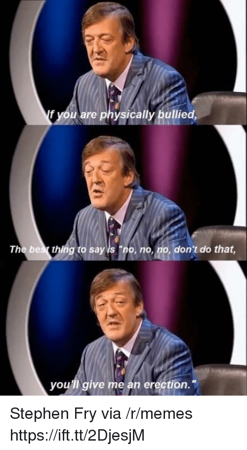 """Memes, Stephen, and Erection: f you are physically bullied,  The bes thing to say is """"no, no, no, don't do that  you'll give me an erection. Stephen Fry via /r/memes https://ift.tt/2DjesjM"""