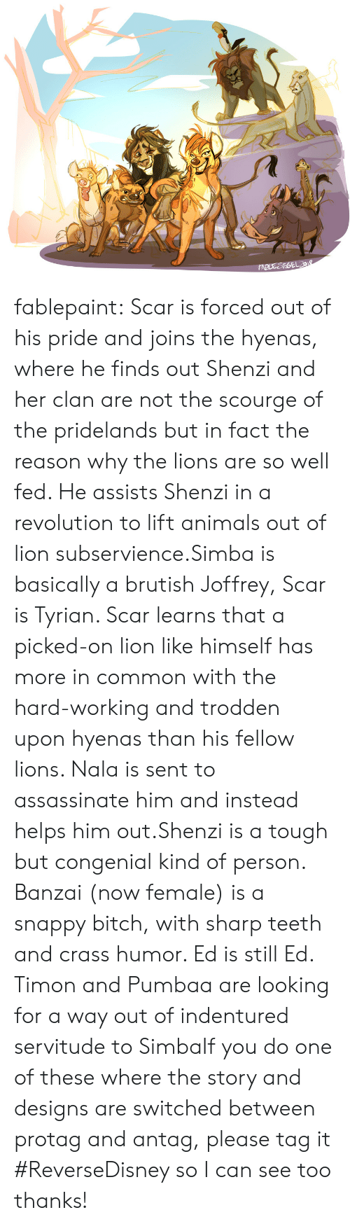 scar: fablepaint:    Scar is forced out of his pride and joins the hyenas, where he finds out Shenzi and her clan are not the scourge of the pridelands but in fact the reason why the lions are so well fed. He assists Shenzi in a revolution to lift animals out of lion subservience.Simba is basically a brutish Joffrey, Scar is Tyrian. Scar learns that a picked-on lion like himself has more in common with the hard-working and trodden upon hyenas than his fellow lions. Nala is sent to assassinate him and instead helps him out.Shenzi is a tough but congenial kind of person. Banzai (now female) is a snappy bitch, with sharp teeth and crass humor. Ed is still Ed. Timon and Pumbaa are looking for a way out of indentured servitude to SimbaIf you do one of these where the story and designs are switched between protag and antag, please tag it #ReverseDisney so I can see too thanks!