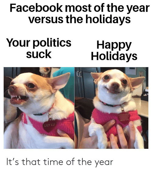 Politics: Facebook most of the year  versus the holidays  Your politics  suck  Нарру  Holidays  LILY LU It's that time of the year