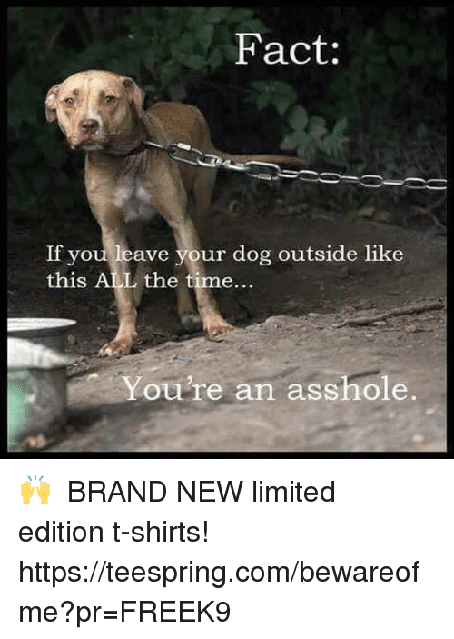 Memes, Limited, and Time: Fact:  If you leave your dog outside like  this ALL the time...  You're an asshole. 🙌  ★ BRAND NEW limited edition t-shirts! ★ https://teespring.com/bewareofme?pr=FREEK9 ★