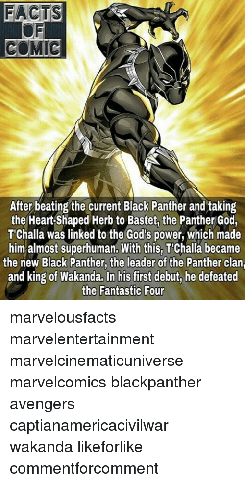 Black Panthers: FACTS  COMIC  After beating the current Black Panther and taking  the Heart Shaped Herb to Bastet, the Panther God,  T'Challa was linked to the God's power, which made  him almost superhuman. With this, Challa became  the new Black Panther, the leader of the Panther clan,  and king of Wakanda. In his first debut, he defeated  the Fantastic Four marvelousfacts marvelentertainment marvelcinematicuniverse marvelcomics blackpanther avengers captianamericacivilwar wakanda likeforlike commentforcomment