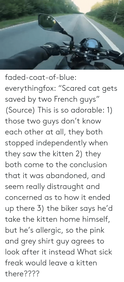 "Aww, Reddit, and Saw: faded-coat-of-blue: everythingfox:   ""Scared cat gets saved by two French guys"" (Source)   This is so adorable: 1) those two guys don't know each other at all, they both stopped independently when they saw the kitten  2) they both come to the conclusion that it was abandoned, and seem really distraught and concerned as to how it ended up there 3) the biker says he'd take the kitten home himself, but he's allergic, so the pink and grey shirt guy agrees to look after it instead   What sick freak would leave a kitten there????"