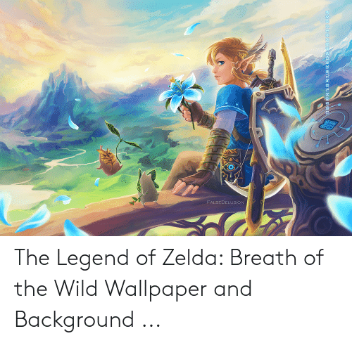 Falsedelusion The Legend Of Zelda Breath Of The Wild
