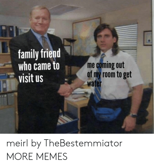 Dank, Family, and Memes: family friend  who came to  visit us  me coming out  of my room to get  water meirl by TheBestemmiator MORE MEMES