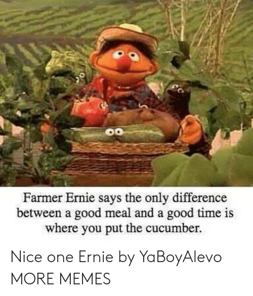 nice one: Farmer Ernie s  ays the only difference  between a good meal and a good time is  where you put the cucumber. Nice one Ernie by YaBoyAlevo MORE MEMES