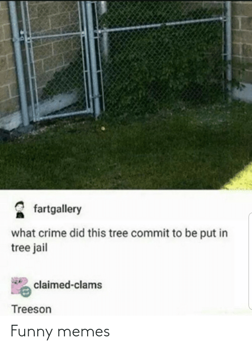 Jail: fartgallery  what crime did this tree commit to be put in  tree jail  claimed-clams  Treeson Funny memes