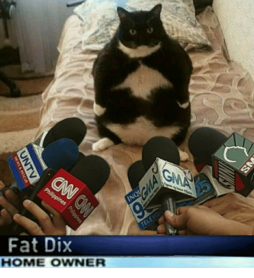 Home, Fat, and Owner: Fat Dix  HOME OWNER