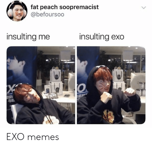 Insulting: fat peach soopremacist  @befoursoo  insulting me  insulting exo  X  ng  ng EXO memes