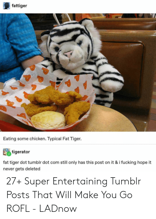 rofl: fattiger  Eating some chicken. Typical Fat Tiger.  tigerator  fat tiger dot tumblr dot com still only has this post on it & i fucking hope it  never gets deleted 27+ Super Entertaining Tumblr Posts That Will Make You Go ROFL - LADnow