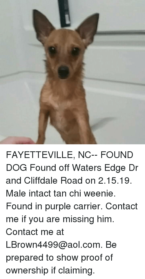 FAYETTEVILLE NC-- FOUND DOG Found Off Waters Edge Dr and