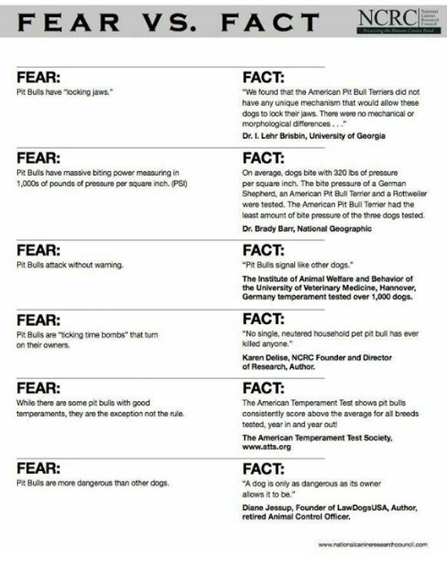 FEAR VS FACT NCRC FACT FEAR Pit Bulls Have Locking Jaws We Found