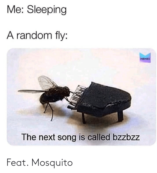 mosquito: Feat. Mosquito